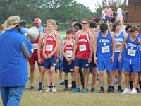 Cross Country Teams